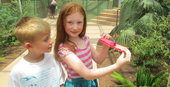 Grandparents on the Go – Butterfly Wonderland