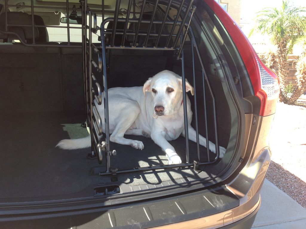 2013 Volvo Xc60 Suv Is A Doggone Safe Car