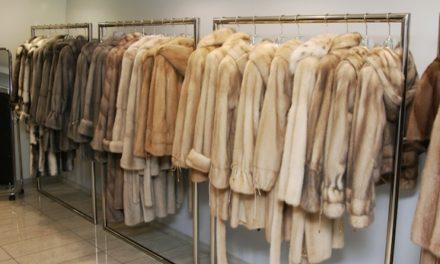 Storing your fur coats during the hot Arizona summer