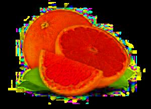 grapefruit_Featured_ten foods