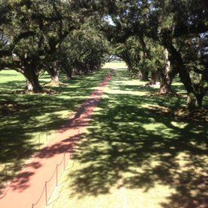 Lexus New Orleans Plantation Gardens