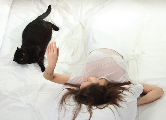 The Cat Lady- Embracing My Life With Veda
