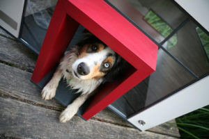 Outdoor Doghouse