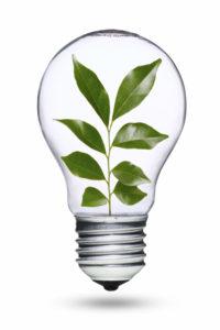 Help the Environment_green bulb