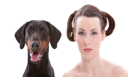 Seeing Double: Why Dogs Look Like Their Owners