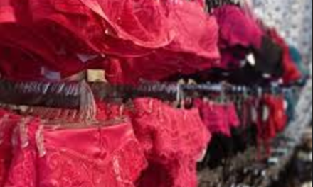 Plus Size Lingerie For Your Valentine's Day