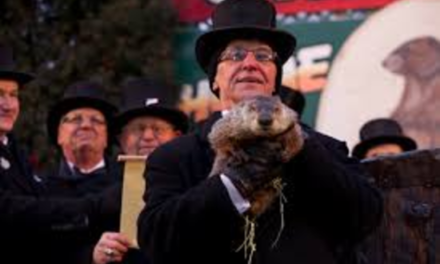 """Groundhogs day, """"It's just still once a year, isn't it?"""""""