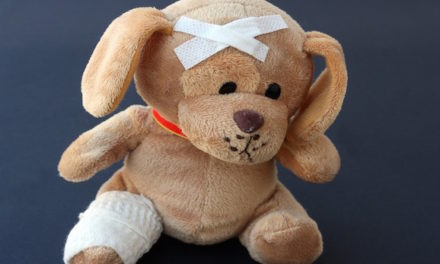 Doctor 'Operates' On Stuffed Animals To Make Child Patients Feel Better