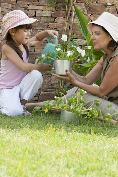 The Overall Benefits of School-Provided Gardens on the Education System