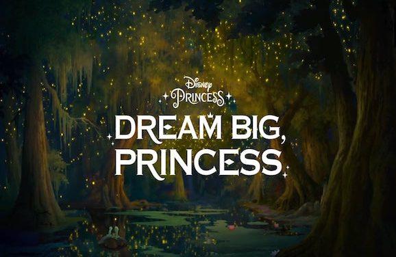 Disney Wants Their Princesses To Dream Big