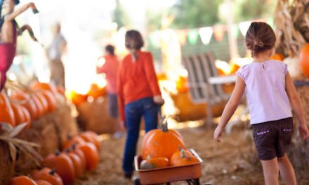 Fun Family Activities You Should Add to Your Fall Bucket List